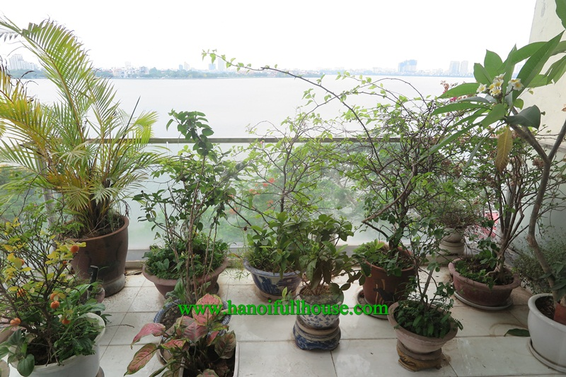 Lake side apartment, three bedrooms with en-suite bathrooms, balcony, cheap price for rent.
