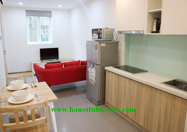 Serviced one bedroom apartment on Hoang Hoa Tham for rent